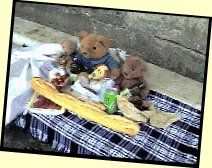 Picture of the Teddies having a picnic